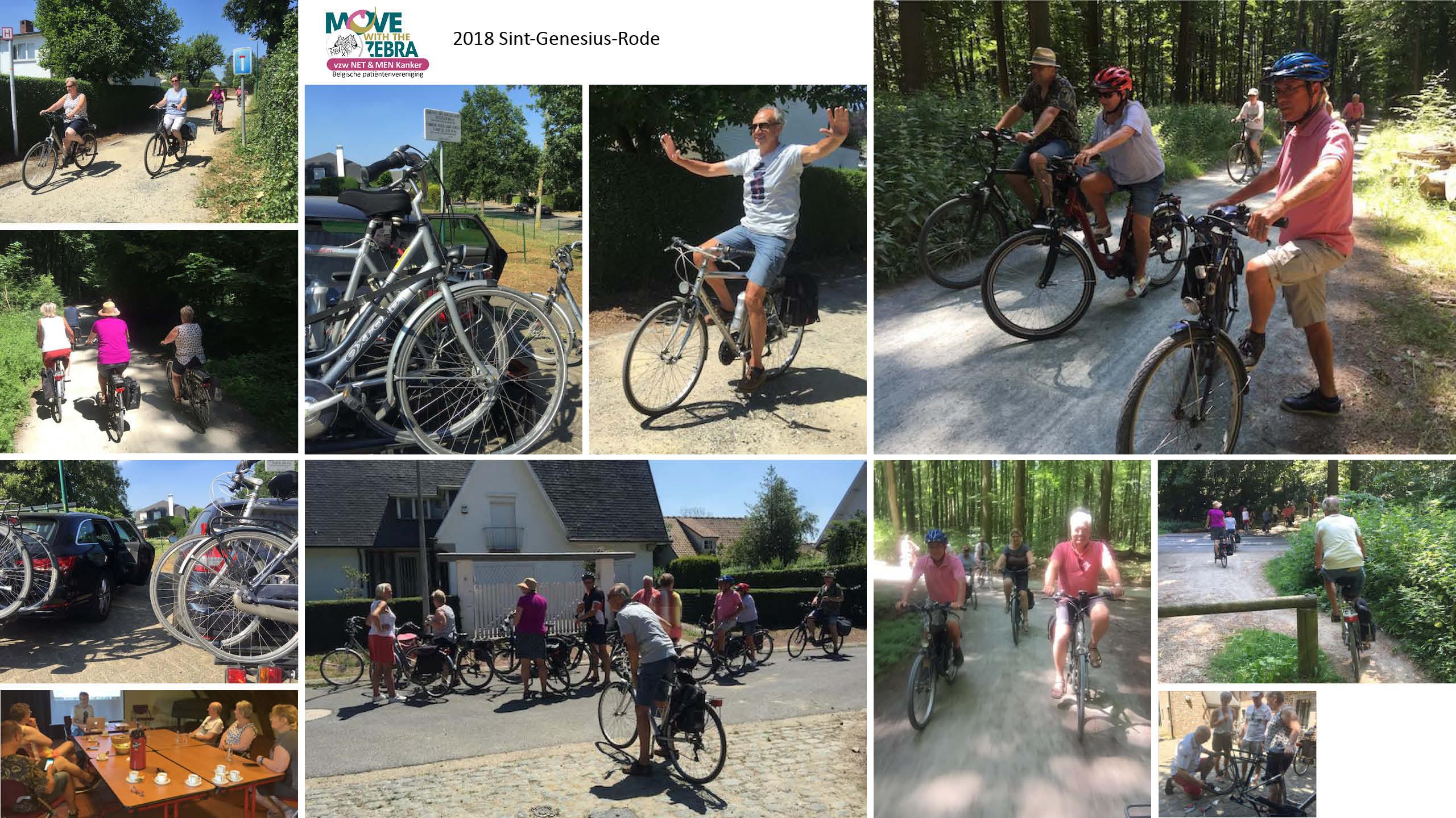Move with the Zebra bijeenkomst in 2018 te Sint-Genesius-Rode